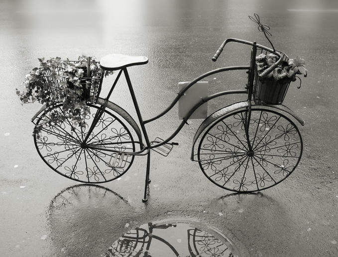 """""""Las bicicletas  son para el otoño"""" por Donibane"""