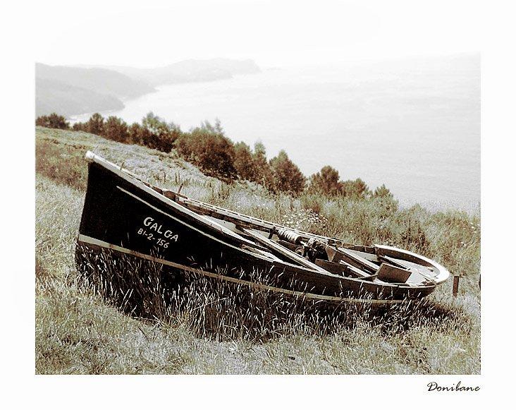Barco en el monte