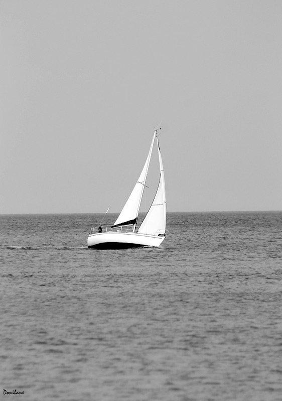 Navegando en Plentzia   Gorliz