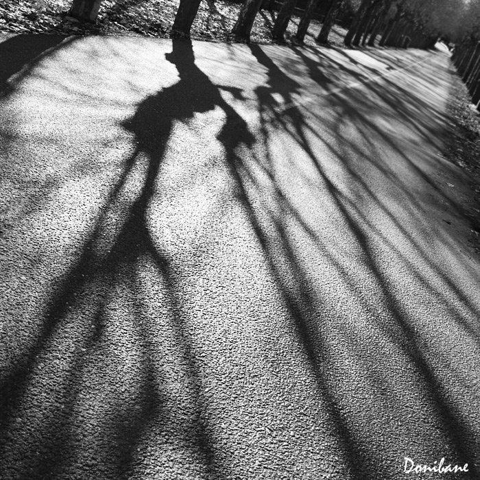 """""""Sombras del pasado"""" por Donibane"""